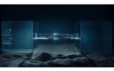 La marque de montres Octopus : des produits de qualité optimale pour les plongeurs